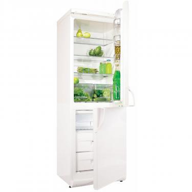 Холодильник Snaige RF 310 1803AA (RF310-1803AA) - фото 1